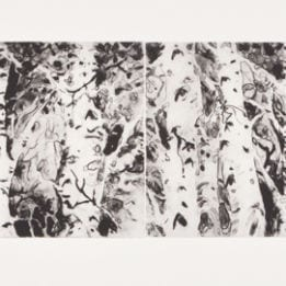 Untitled (double aspen)